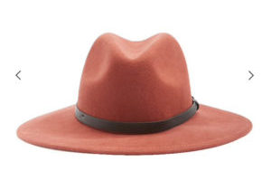 Small Brim Fedora $22.90